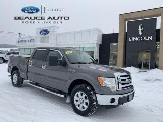 Used 2013 Ford F-150 F150 for sale in Beauceville, QC