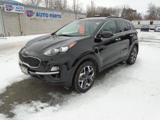 Used 2020 Kia Sportage EX AWD / PANORAMIC  ROOF/ for sale in Beaverton, ON