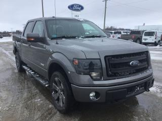 Used 2013 Ford F-150 FX4 | 4X4 | Power Moonroof for sale in Harriston, ON
