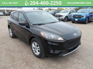 New 2020 Ford Escape S for sale in Brandon, MB