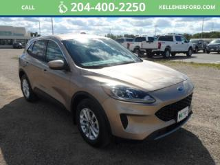 New 2020 Ford Escape SE for sale in Brandon, MB