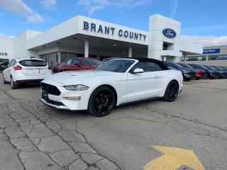New 2020 Ford Mustang EcoBoost Premium for sale in Brantford, ON