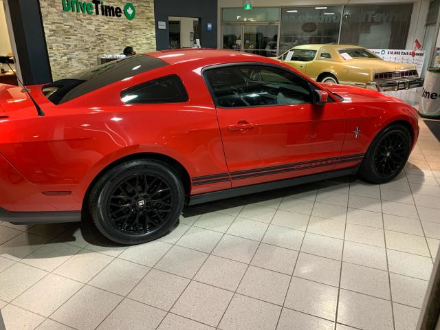 2010 Ford Mustang V6 Value Leader
