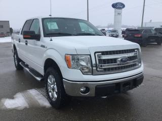 Used 2014 Ford F-150 XLT for sale in Harriston, ON