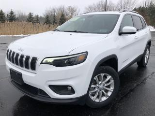 Used 2019 Jeep Cherokee North 4WD for sale in Cayuga, ON