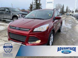 Used 2016 Ford Escape SE Voice Activated Navigation - Remote Keyless Entry for sale in Calgary, AB