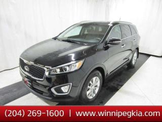 Used 2017 Kia Sorento 2.4L LX AWD *Always Owned In MB!* for sale in Winnipeg, MB