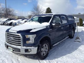 Used 2016 Ford F-150 Ford F-150 XLT 4X4 for sale in Montréal, QC