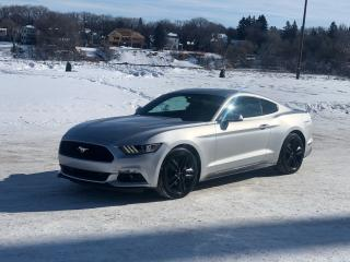 Used 2015 Ford Mustang EcoBoost Premium for sale in Saskatoon, SK