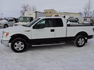 Used 2010 Ford F-150 for sale in Winnipeg, MB