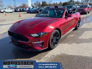 Used 2019 Ford Mustang EcoBoost Premium  - Low Mileage for sale in Woodstock, ON