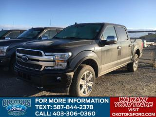 New 2019 Ford F-150 Platinum LAST OF THE 2019 F-150s - $20,000 OFF - FULLY LOADED PLATINUM! for sale in Okotoks, AB