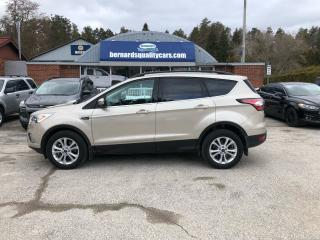 Used 2018 Ford Escape SEL for sale in Flesherton, ON