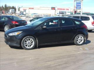 Used 2015 Ford Focus for sale in Fenelon Falls, ON