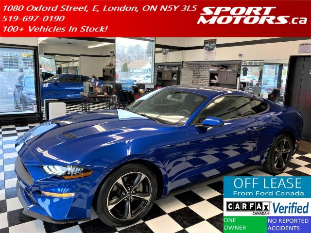 2018 Ford Mustang EcoBoost FASTBACK+ECOBOOST+CAM+310HP+Accident Free