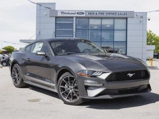 New 2020 Ford Mustang EcoBoost 101A | NAV | WH & STRIPE PKG for sale in Winnipeg, MB