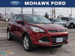 Used 2016 Ford Escape SE for sale in Hamilton, ON