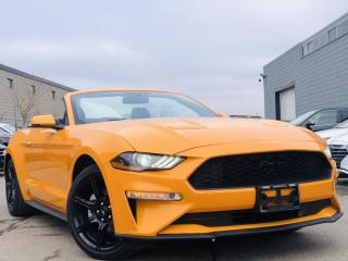 Used 2019 Ford Mustang |CONVERTIBLE|COOLING SEATS|REAR CAM SENSORS|LEATHER|ALLOYS! for sale in Brampton, ON