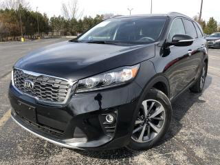 Used 2019 Kia Sorento EX Premium AWD for sale in Cayuga, ON