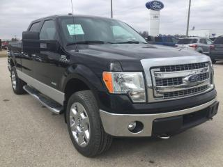 Used 2014 Ford F-150 XTR Chrome | 4X4 | Rear View Camera for sale in Harriston, ON