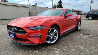 Used 2019 Ford Mustang EcoBoost Premium|6 Speed|Navi|Leather|HTD Seats for sale in Bolton, ON