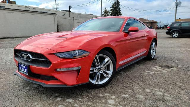 2019 Ford Mustang EcoBoost Premium|6 Speed|Navi|Leather|HTD Seats