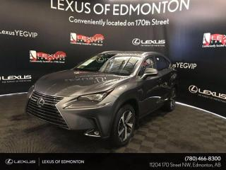 New 2020 Lexus NX 300h Executive Package for sale in Edmonton, AB