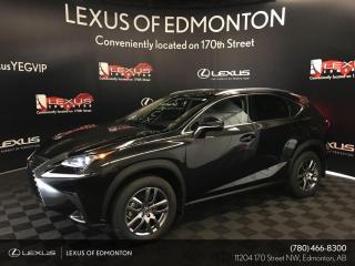New 2020 Lexus NX 300 Premium Package for sale in Edmonton, AB
