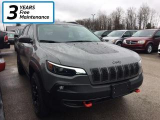 Used 2019 Jeep Cherokee Trailhawk 4X4 for sale in Smiths Falls, ON