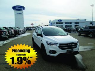 Used 2019 Ford Escape Titanium for sale in Lacombe, AB