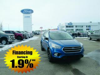 Used 2019 Ford Escape Titanium for sale in Drayton Valley, AB