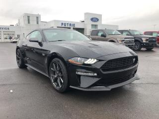 New 2020 Ford Mustang EcoBoost Premium for sale in Kingston, ON