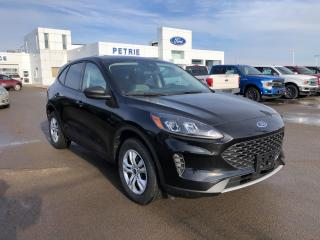 New 2020 Ford Escape S for sale in Kingston, ON