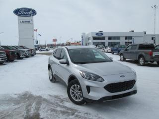 New 2020 Ford Escape SE for sale in Lacombe, AB