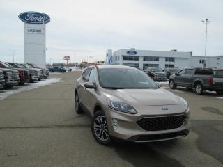 New 2020 Ford Escape SEL for sale in Lacombe, AB