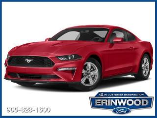 Used 2019 Ford Mustang Coupe for sale in Mississauga, ON