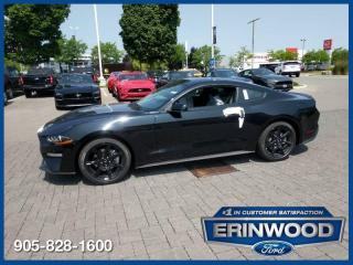 New 2019 Ford Mustang EcoBoost for sale in Mississauga, ON