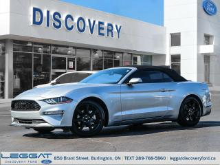Used 2019 Ford Mustang for sale in Burlington, ON