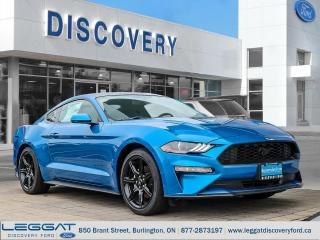 New 2019 Ford Mustang Coupe Ecoboost for sale in Burlington, ON