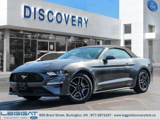 New 2019 Ford Mustang Convertible Ecoboost for sale in Burlington, ON