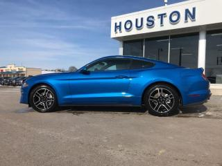 New 2020 Ford Mustang EcoBoost for sale in Stouffville, ON