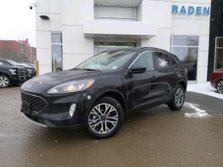 New 2020 Ford Escape SEL for sale in Kingston, ON