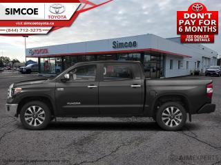 New 2020 Toyota Tundra Platinum  - Navigation -  Sunroof - $371 B/W for sale in Simcoe, ON