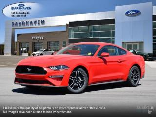 Used 2019 Ford Mustang EcoBoost for sale in Ottawa, ON