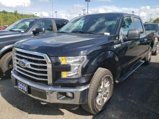 Used 2016 Ford F-150 XLT SUPERCREW 5.0L V8 4X4 CRUISE HANDS FREE for sale in Trenton, ON