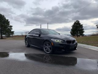 Used 2015 BMW 2-Series M235i xDrive for sale in Tilbury, ON