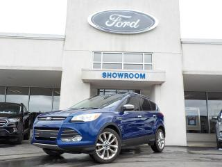 Used 2015 Ford Escape SE for sale in Mount Brydges, ON