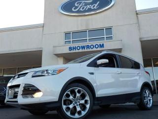 Used 2016 Ford Escape Titanium for sale in Mount Brydges, ON