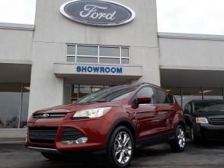 Used 2016 Ford Escape SE AWD for sale in Mount Brydges, ON