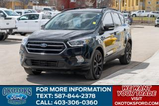 Used 2017 Ford Escape Titanium 4WD, 2.0L Ecoboost Engine, Canadian Touring Package, Moonroof, Navigation, Sync Connect for sale in Okotoks, AB